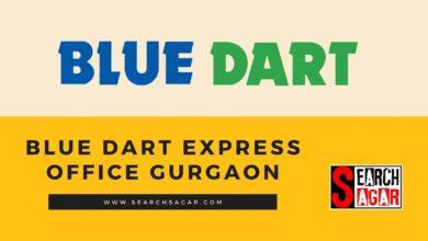 Photo of Blue Dart Express Delhi Address, Phone no., Email ID