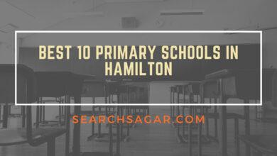 Photo of Best 10 Primary Schools in Hamilton