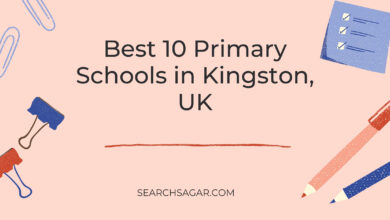 Photo of Best 10 Primary Schools in Kingston, UK